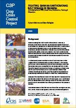 Fighting Banana Xanthomonas Wilt Disease in Rwanda