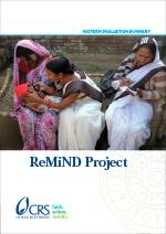 Midterm Evaluation Summary: The ReMiND Project
