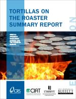 Tortillas on the Roaster