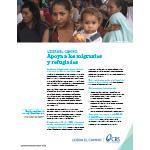 Lidera el camindo de la migración: Resume sobre el problema